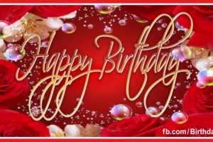 Happy Birthday Card with Red Rose