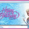 Elsa and Anna celebrating your birthday - FZN002-a