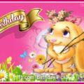 Cute girly bunny birthday card - 612