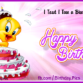 Her Tweety birthday cake - card