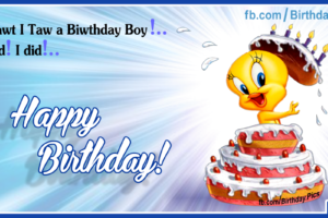 His Tweety Birthday Cake – Happy Birthday To You