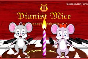 Pianist Mice Happy Birthday Song on the Piano