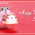 Cute Mouse Cake Happy Birthday Card