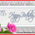 Elegant Pink Roses Happy Birthday Card