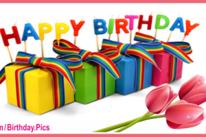 Gift Boxes Tulips Happy Birthday Card