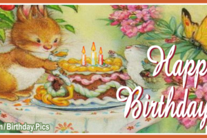 Bunny Decorating Cake Happy Birthday Card For You