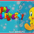 Cute Tweety Bird Happy Birthday Card