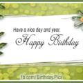 Orange Roses Green Happy Birthday Card