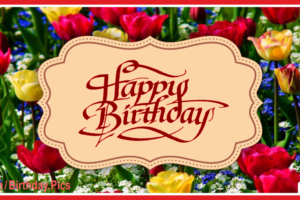 Red Yellow Tulips Happy Birthday Card