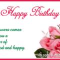 Romantic Pink Roses Happy Birthday Card