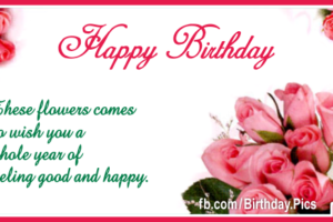 Romantic Pink Roses Happy Birthday Card