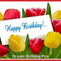 Yellow Red Tulips Happy Birthday Card