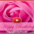 Pink Rose Romantic Birthday Silent Video - featured