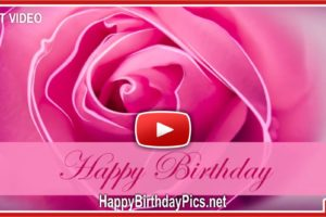 Pink Rose Romantic Birthday Silent Video
