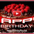 Enjoy the Journey of Life, Happy Birthday 3