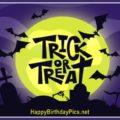 Happy Halloween Graveyard Bats