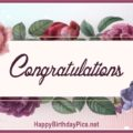 Congratulations Flowers to You