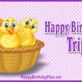 Happy Birthday Triplets - Three Chicks