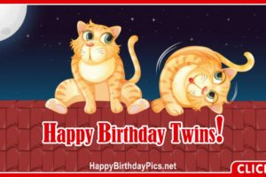 Happy Birthday Twin Cats