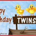 Happy Birthday Twin Chicks