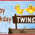 Happy Birthday Twin Chicks