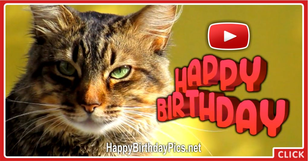 A Day Filled With Happiness Happy Birthday Cat Video
