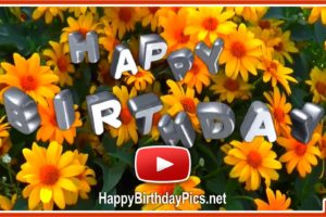 A bouquet of happiness and birthday flowers – Happy Birthday