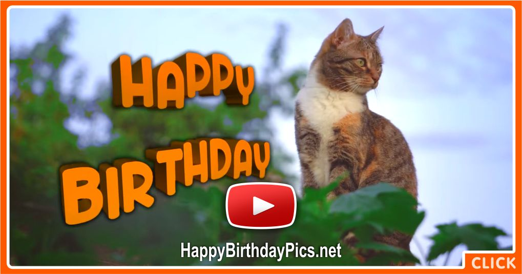 A Day Filled With Happiness Happy Birthday Video