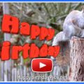 Squirrel Happy Birthday Cake